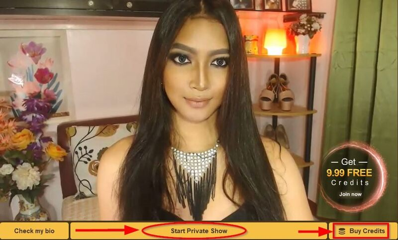 Sexy tranny in Open Chat Room, for Private Chat on MyTrannyCams, you need Credits.