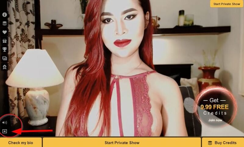 MyTrannyCams offer 3 convenient screen sizes to view live hot trannies.